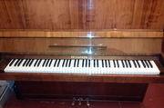 Фортепиано/пианино Беларусь